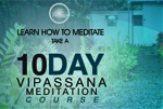 10-Day Course Overview